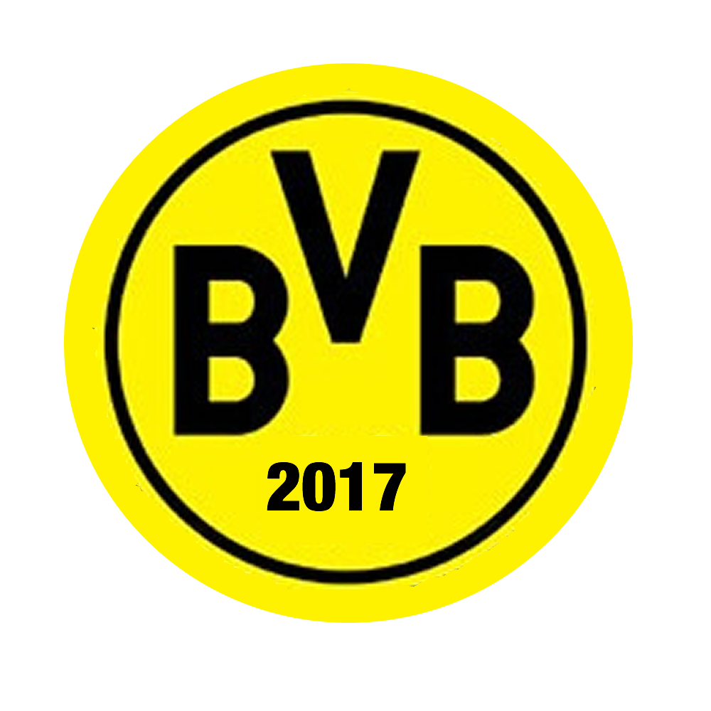 BvB 09 anno 2017
