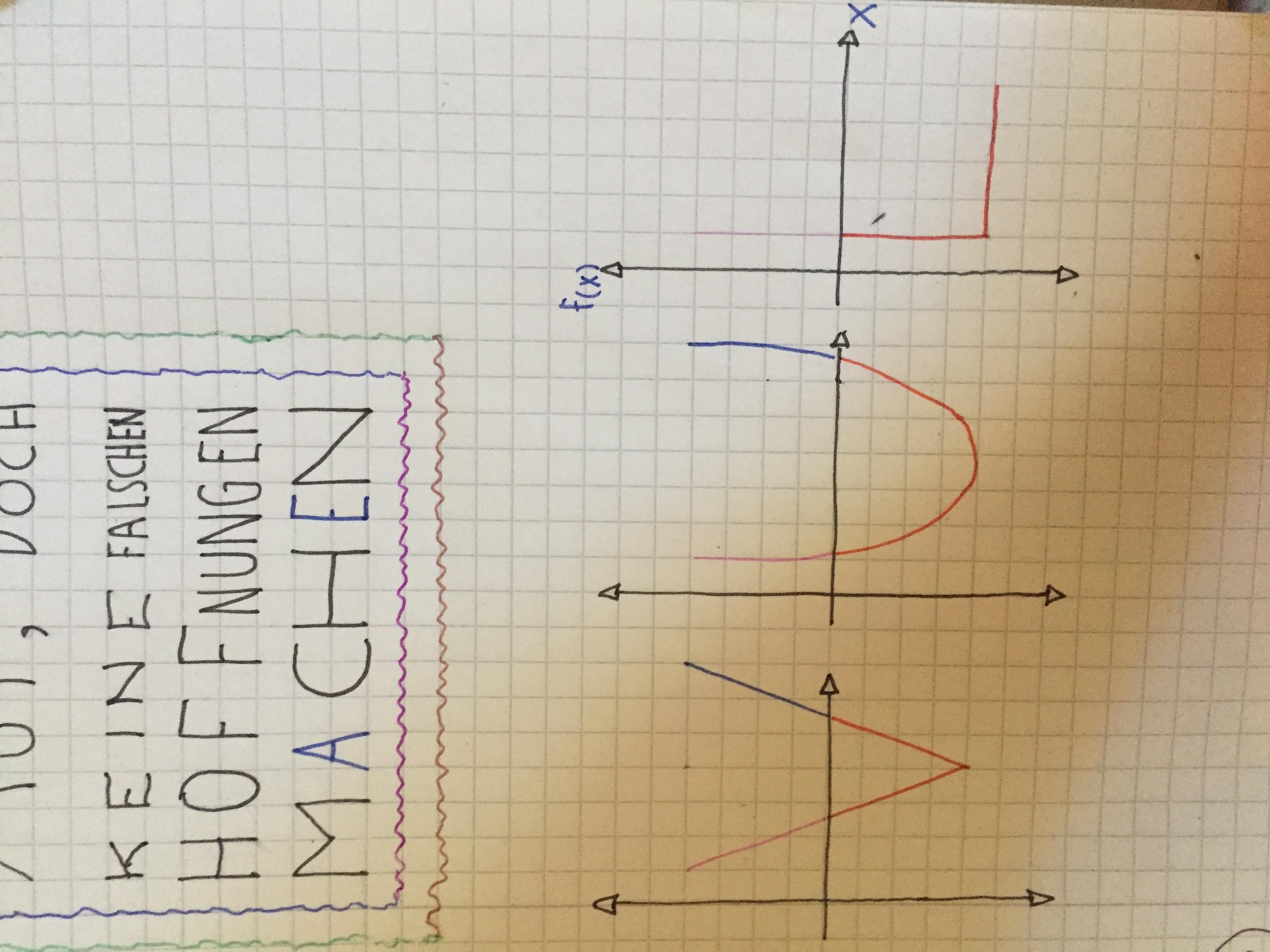 Das Pamphlet beruft sich auf die VUL-Kurve, wobei die drei Buchstaben ausnahmsweise nichts abkürzen — ganz im Gegenteil